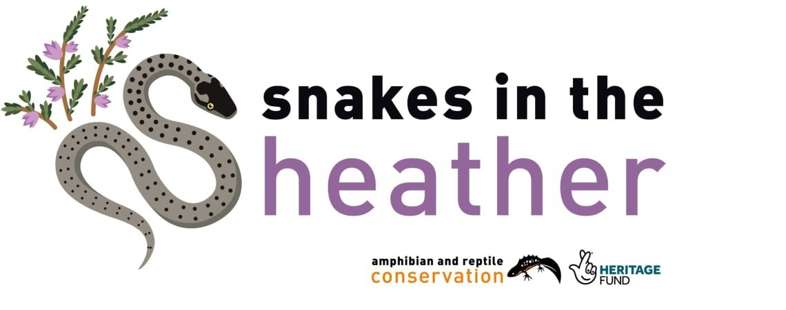 Event - Snakes in the Heather